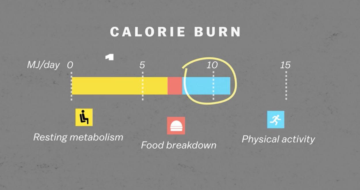 Drie manieren energie verbranden