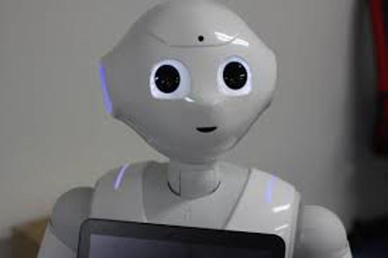 Afbeelding van Van krachtpatser tot boodschapper: robots moeten het leven makkelijker maken