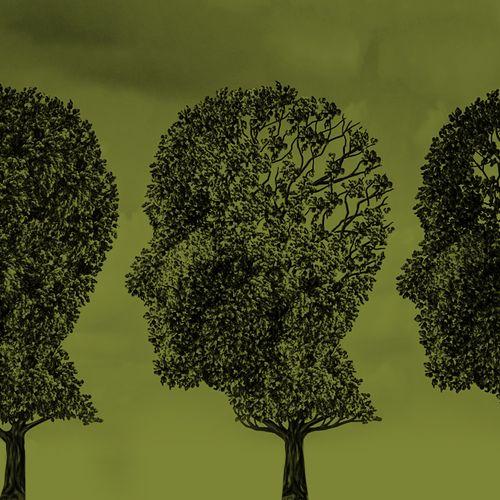 Afbeelding van De Pauw Alzheimer-special in vogelvlucht